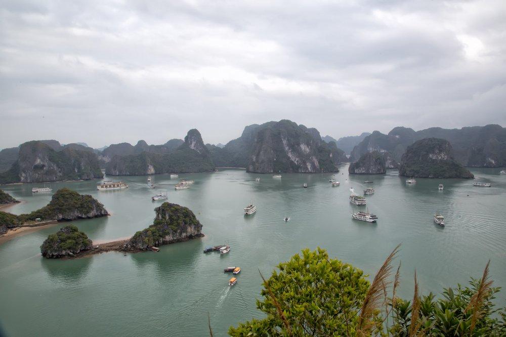 Vietnam-2020-725